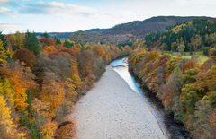 Glengarry-Forest-1200x776.jpg
